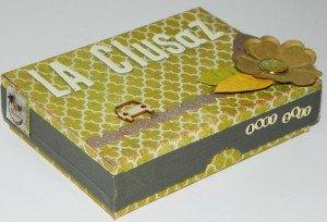 Une boîte pour un mini dans Albums dscn4891-300x204